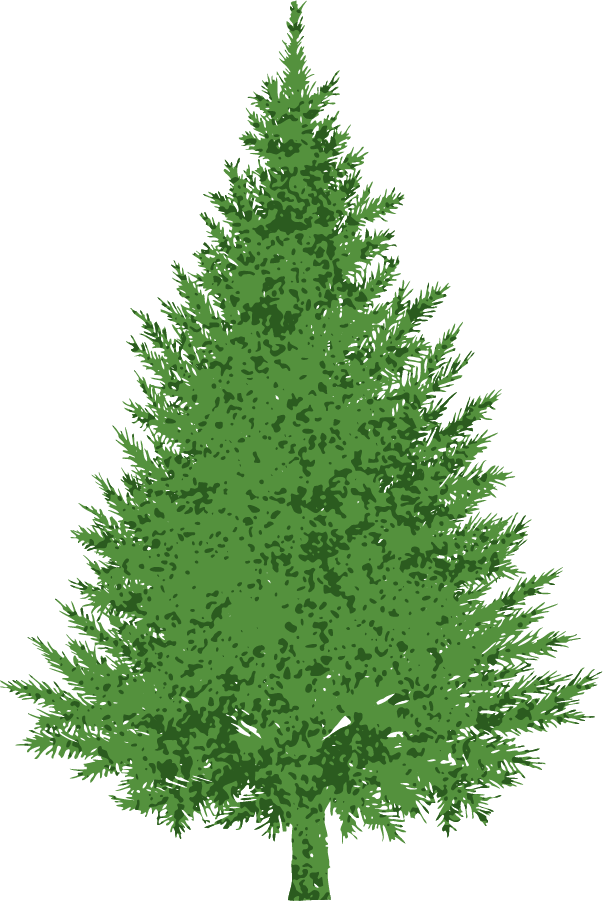 Evergreen tree clipart svg royalty free library 28+ Collection of Evergreen Tree Clipart Images | High quality, free ... svg royalty free library