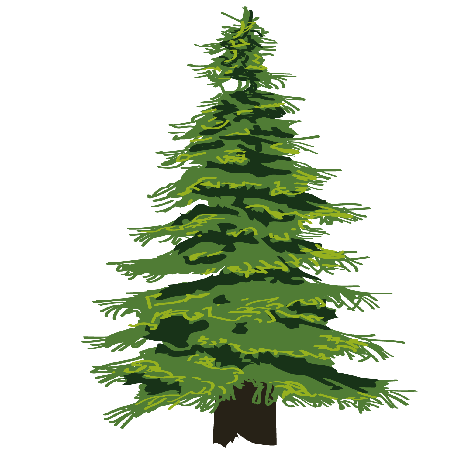 Clipart spruce tree picture library library Evergreen Tree Pine Drawing Clip art - Cartoon fine jungle 1500*1501 ... picture library library