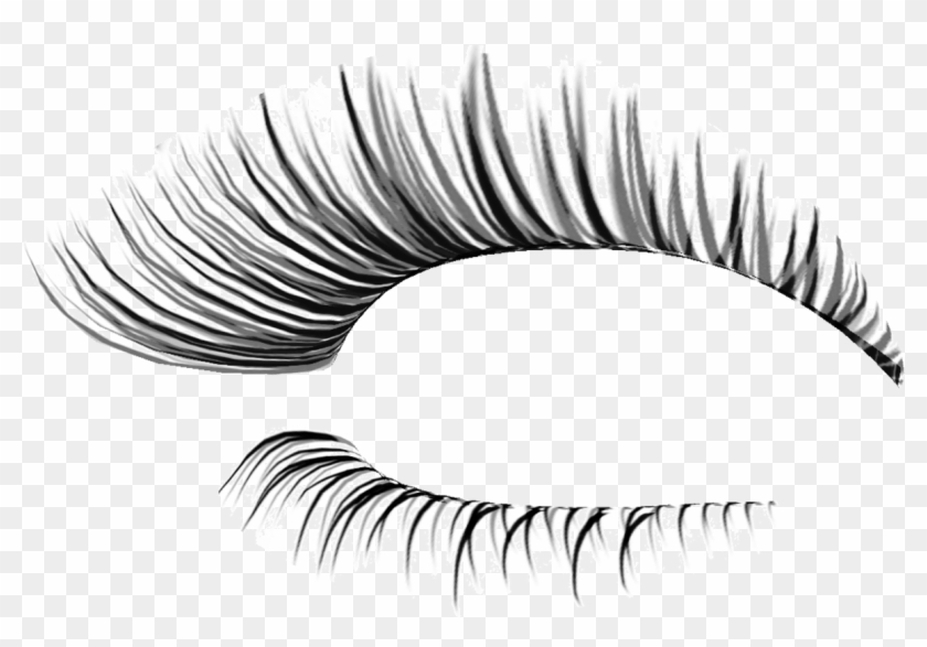 Eyelash clipart png banner library download Cliparts For Free Download Eyelash Clipart - Fake Eyelashes ... banner library download