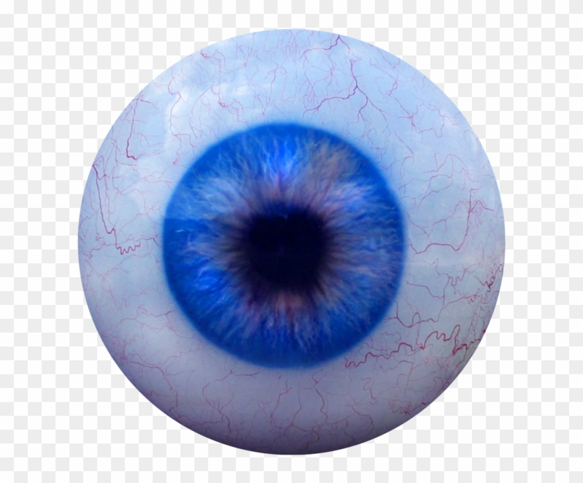 Clipart eyes in the dark creepy svg transparent Scary Eye Png - Transparent Creepy Eyeball Png, Png Download ... svg transparent