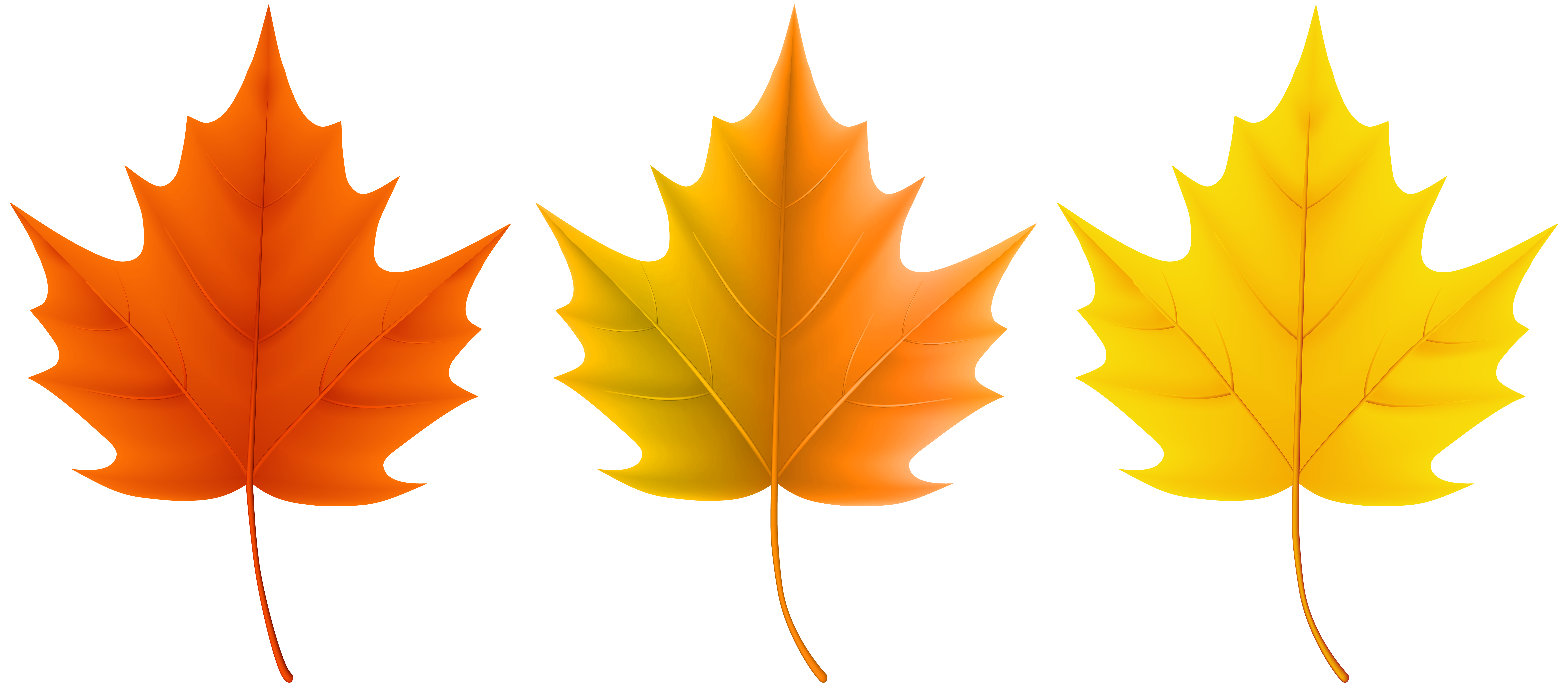 Clipart fall leaves png library library Autumn Leaves Set PNG Clip Art Image | Gallery Yopriceville - High ... png library library