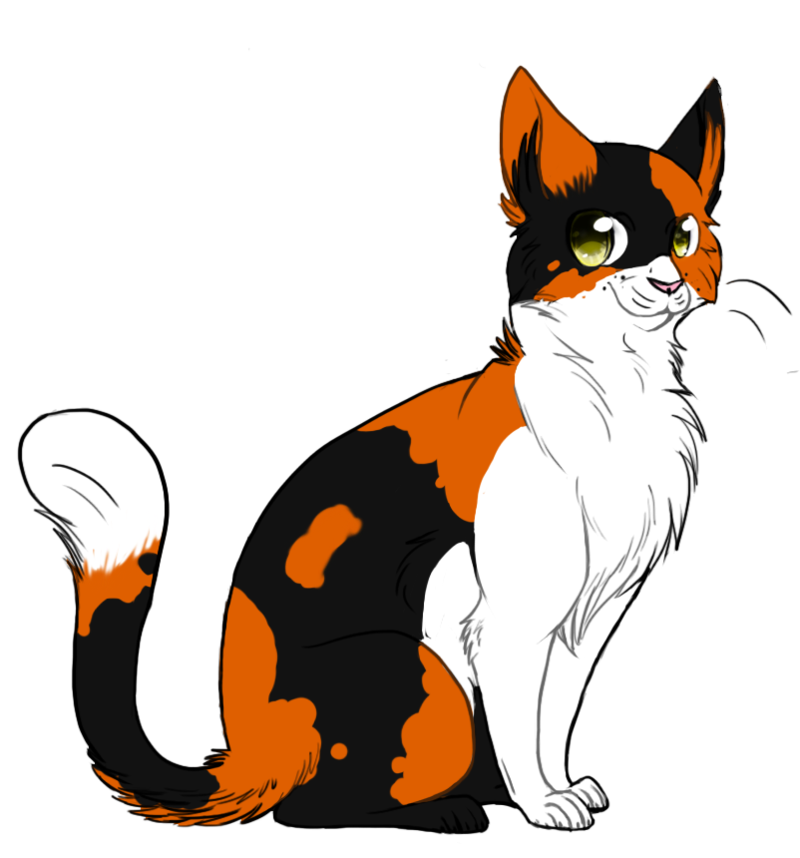 Feed cat clipart free Dapplefrost | The Return of the Clans Wiki | FANDOM powered by Wikia free
