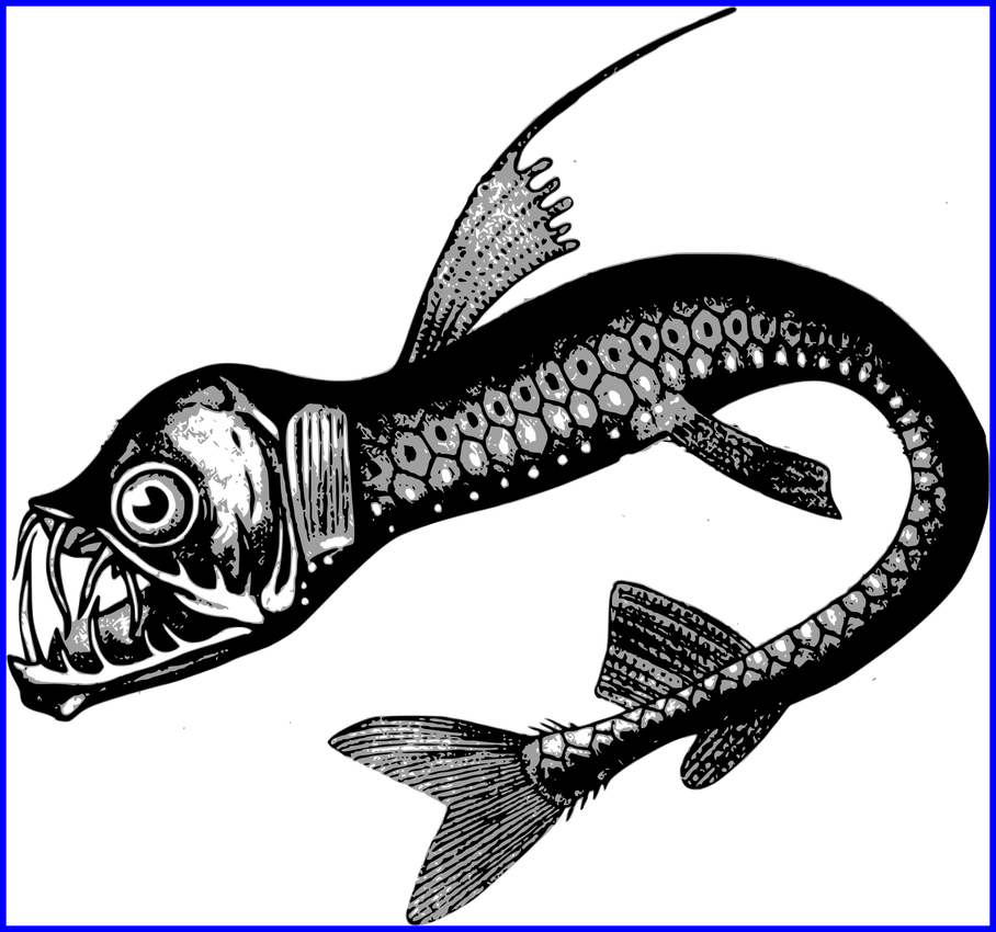 Clipart fish drawing svg free The Best Clipart Real Sea Monster Backgrounds Etc Picture For Fish ... svg free