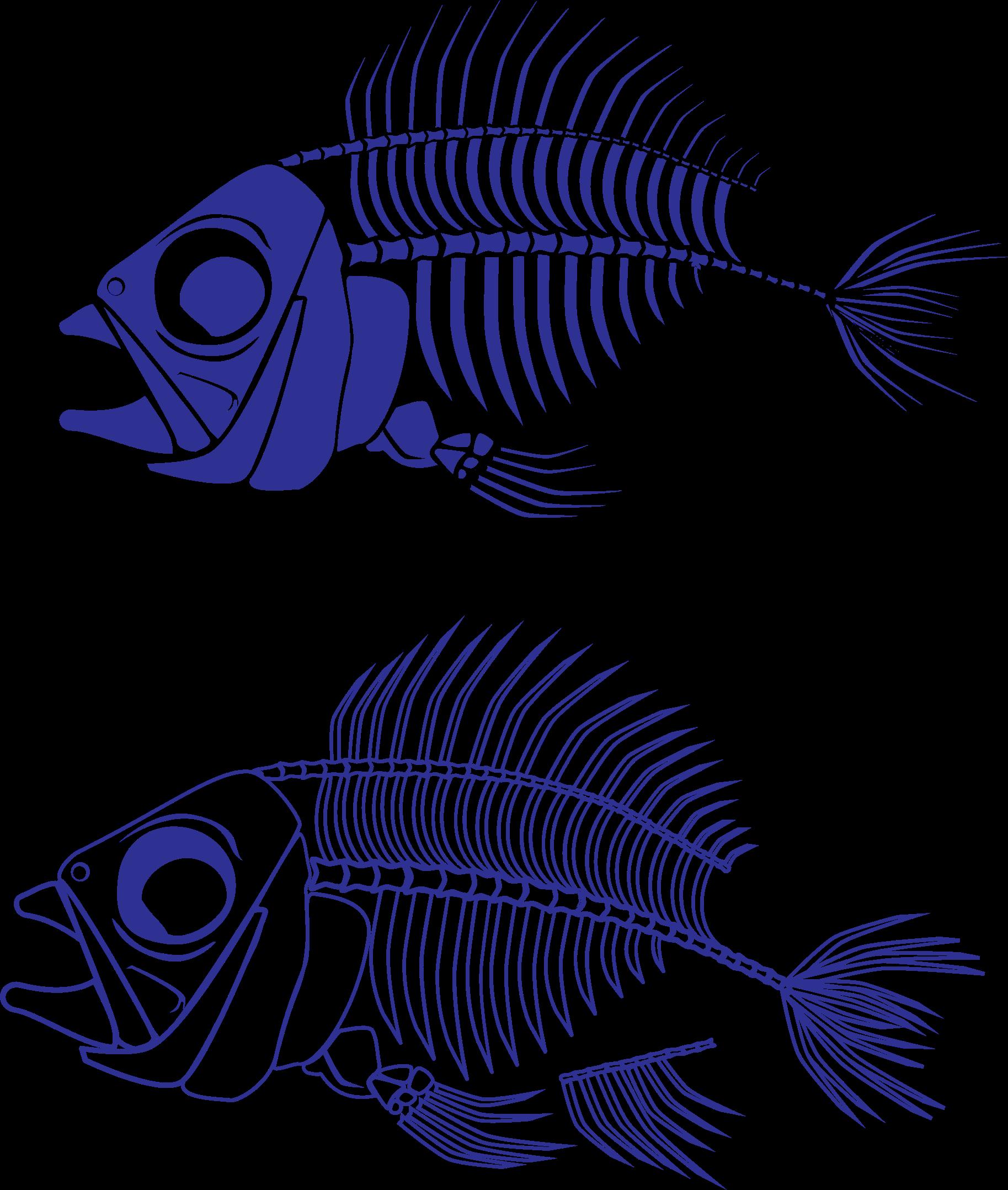Fish skeleton clipart clip art black and white download Clipart - Fish Skeleton clip art black and white download