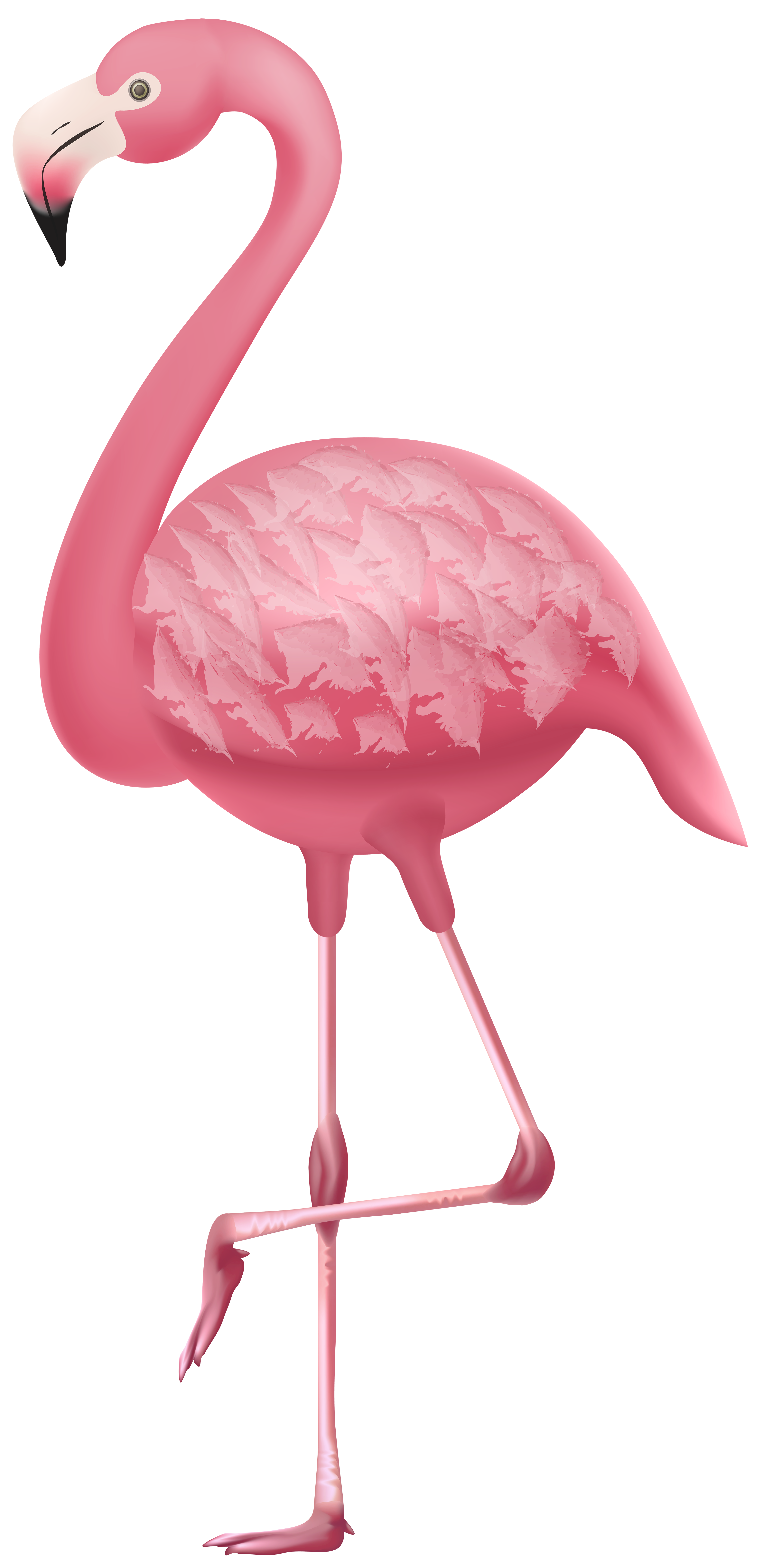 Clipart flamingo graphic free stock Flamingo PNG Clipart | Gallery Yopriceville - High-Quality Images ... graphic free stock