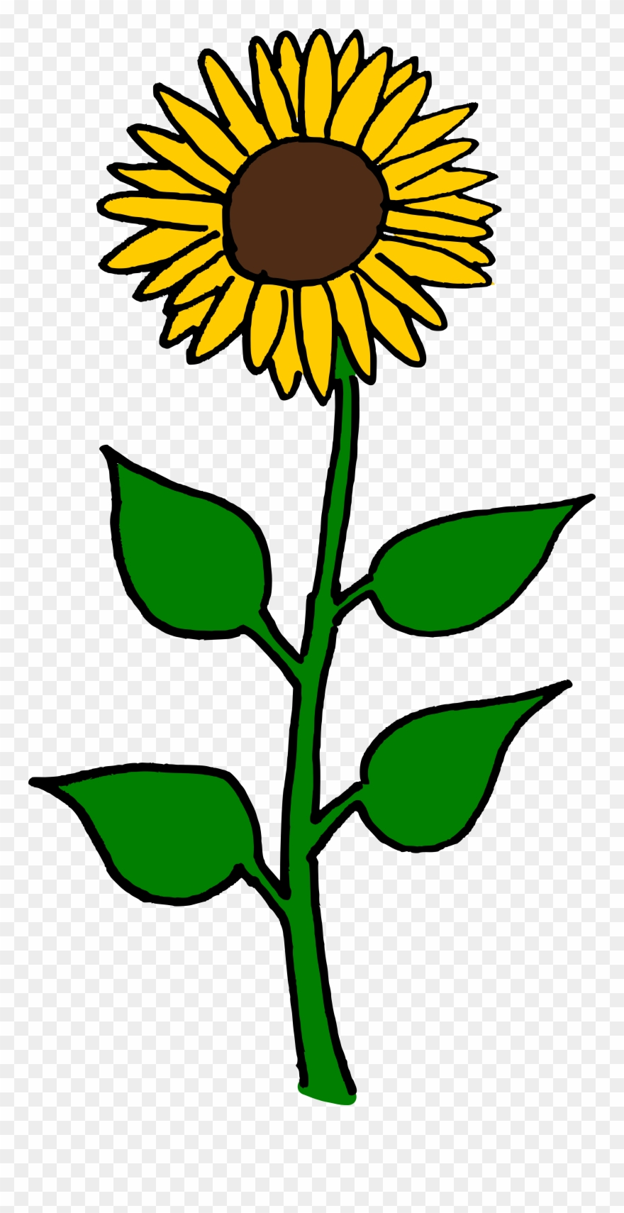 Clipart flwers clip art black and white library Flower Clipart Sunflower - Sun Flowers Clip Art - Png Download ... clip art black and white library