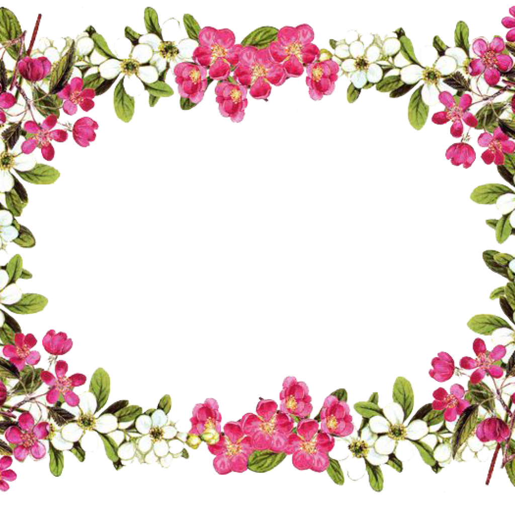 Flower border free clipart vector royalty free library Flower Border Png animal clipart hatenylo.com vector royalty free library