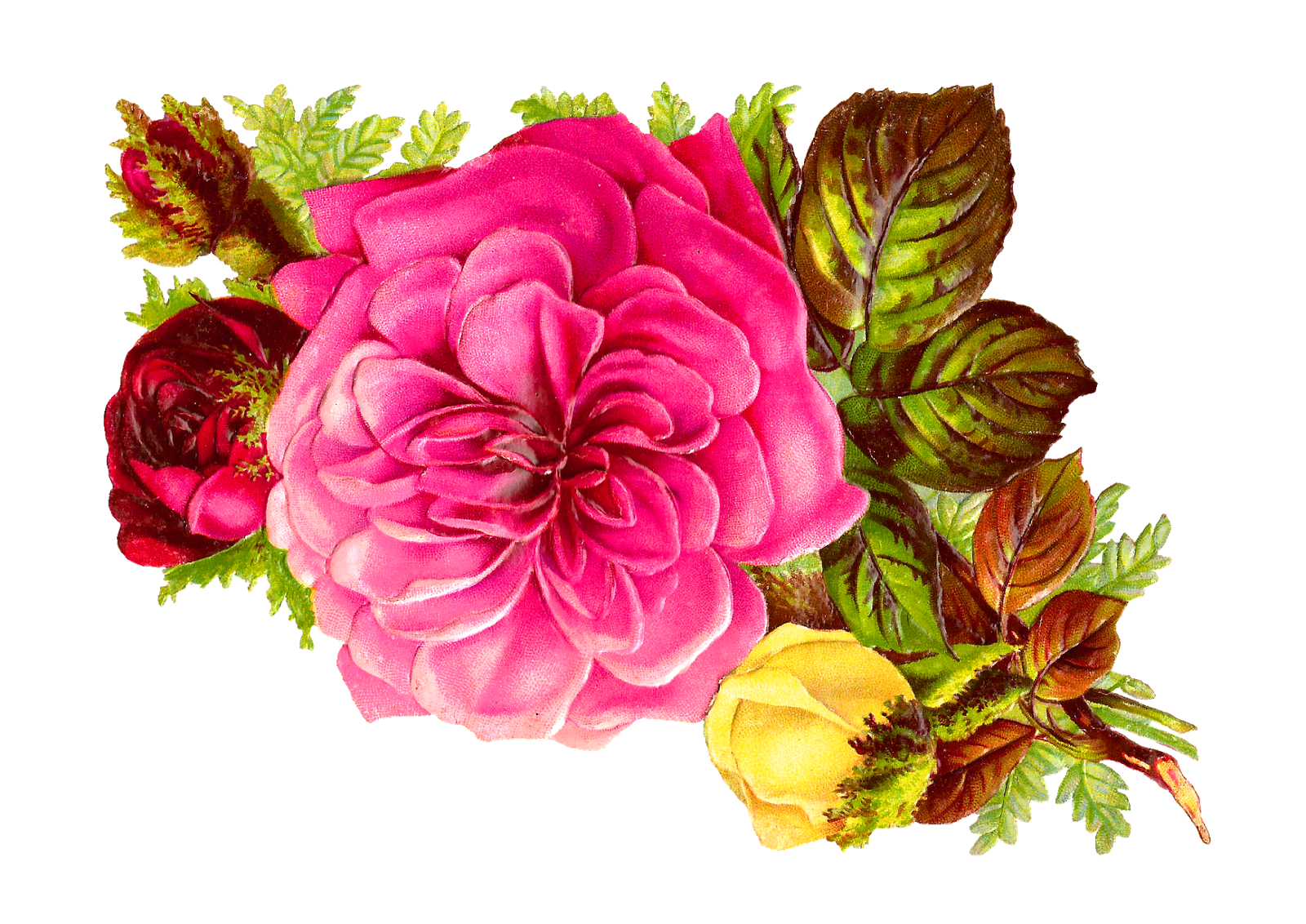 Flower bouquet clipart jpg free library habrumalas: Pink Flower Bouquet Clip Art Images jpg free library