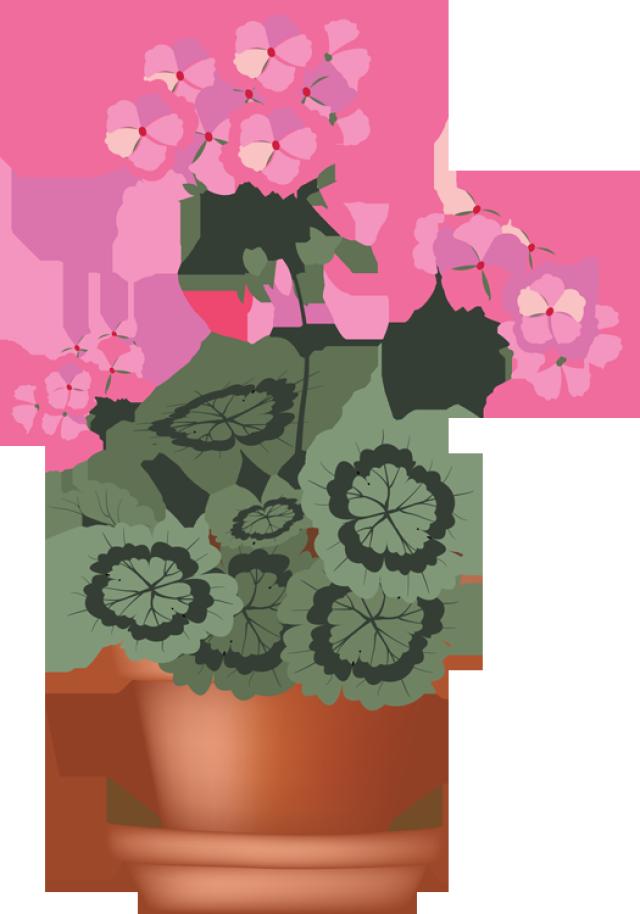 Flower in pot clipart. Clip art of beautiful