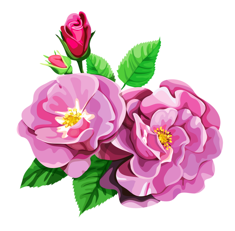 Dainty flower clipart vector library stock ROSE BOUQUET CLİPART TRANSPARENT | Design Patterns Studio ... vector library stock