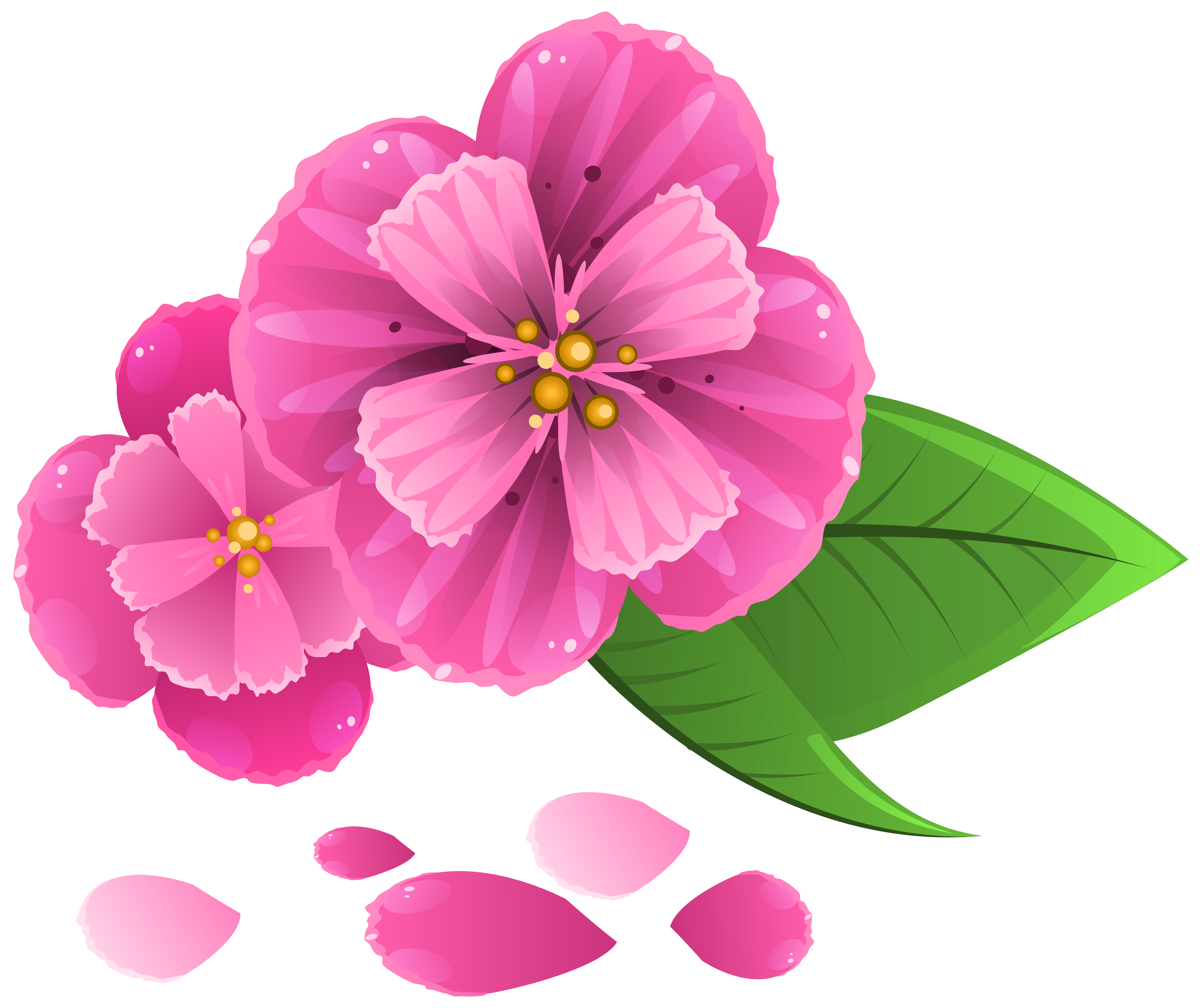 Flower pedal clipart clipart royalty free Pink Flower with Petals PNG Clipart Image | Gallery Yopriceville ... clipart royalty free