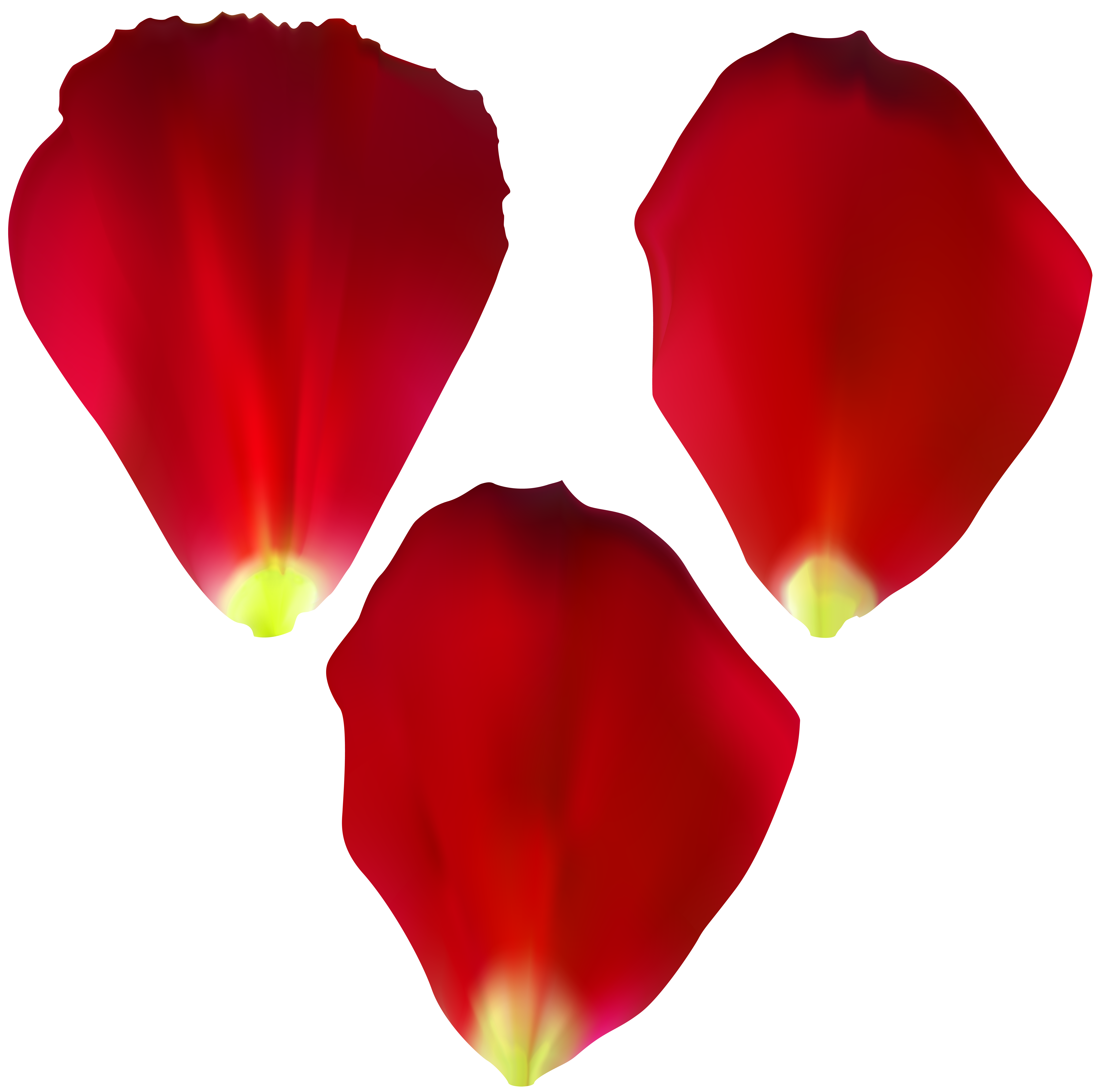 Rose computer icons painting. Flower petals clipart