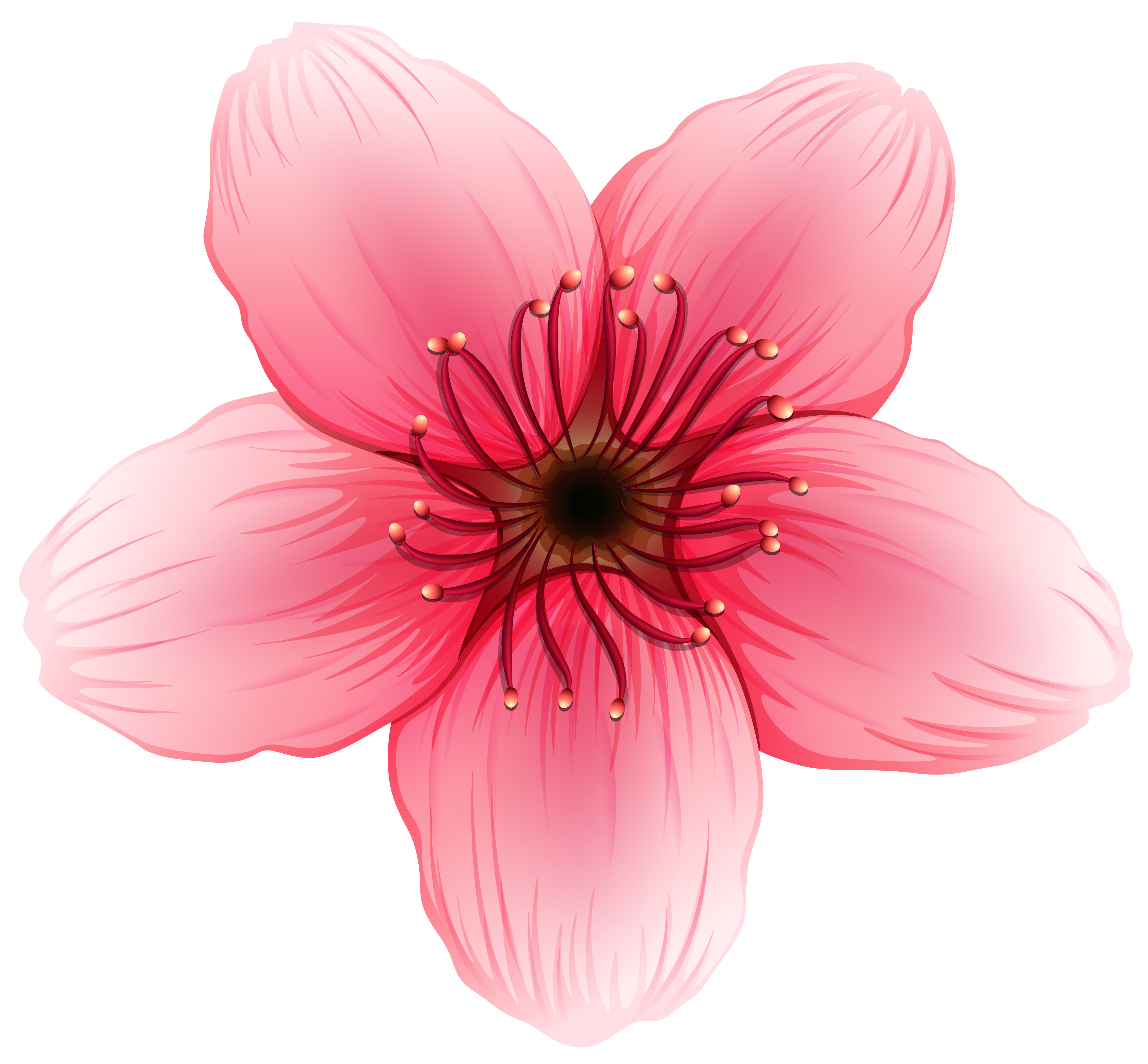 Clipart flower png vector free stock Flower PNG Clipart Image vector free stock