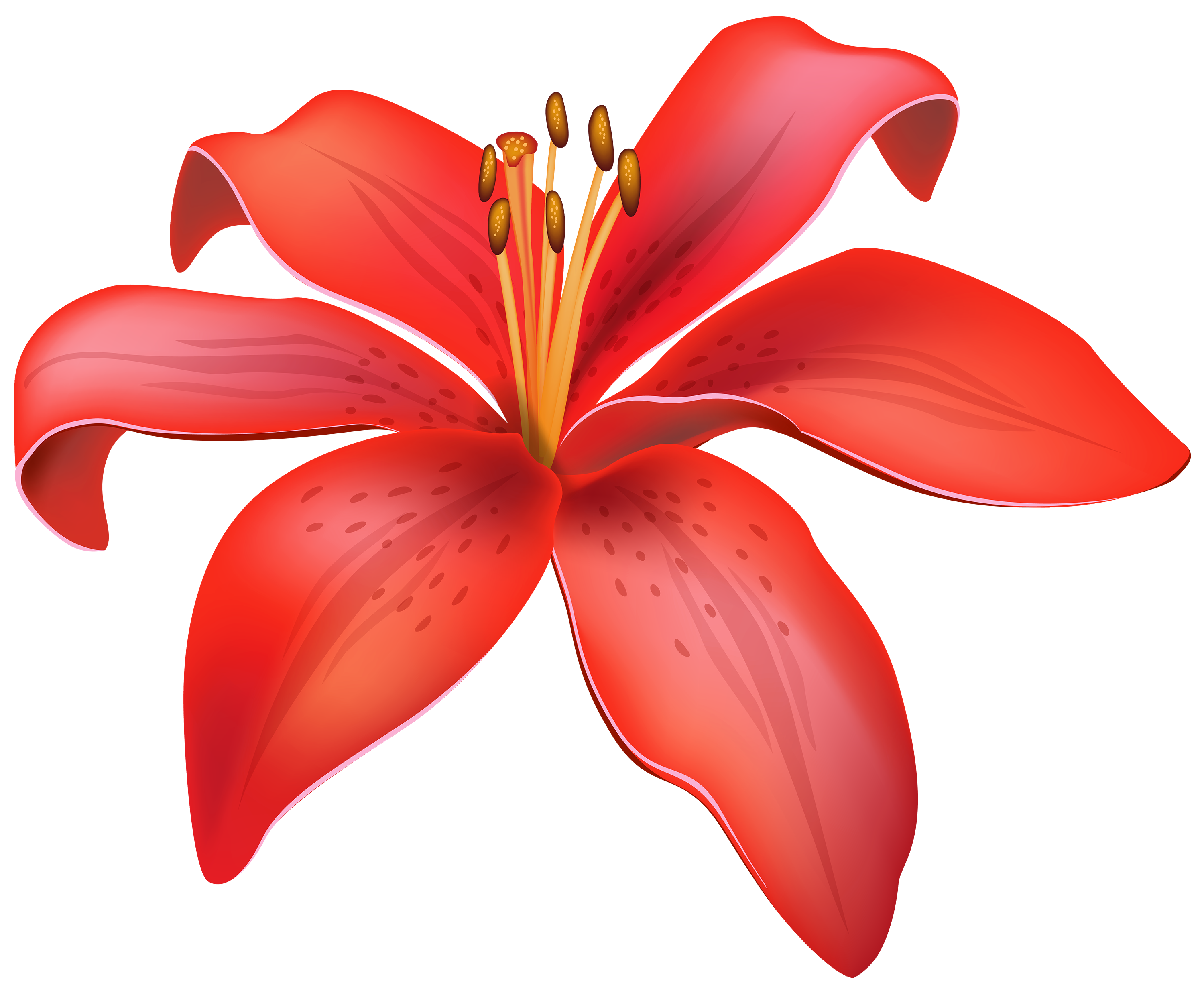 Flower faces clipart svg royalty free Red Lily Flower PNG Clipart - Best WEB Clipart svg royalty free
