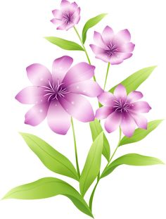 Exotic flowers and plant. Clipart flower png