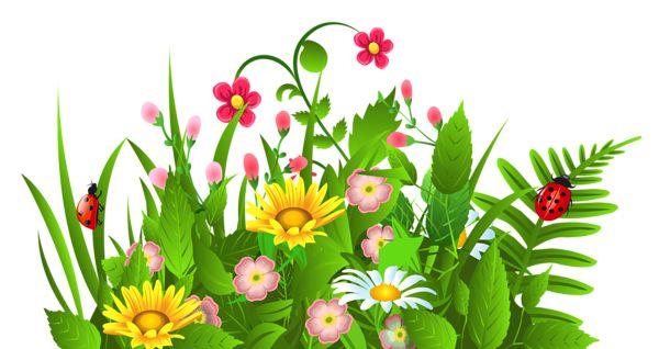 Clipart flower png. Grass with clipartfest grasses