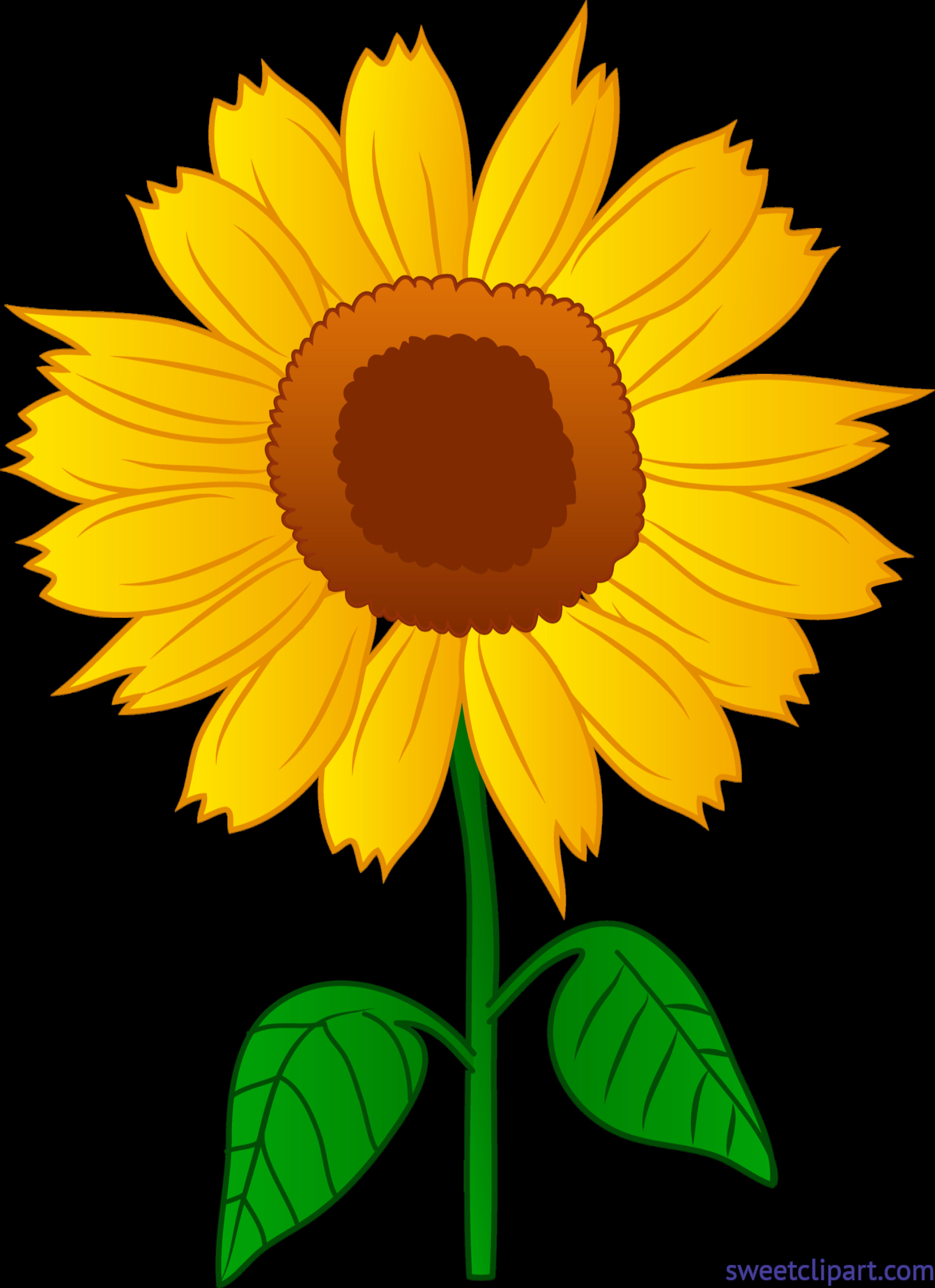 Clipart sun flower svg transparent stock Sunflower 2 Clip Art - Sweet Clip Art svg transparent stock