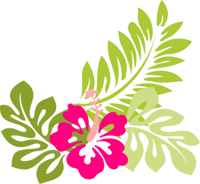 Hawaiian flower clipart png image library stock Image - Tropical-flower-clip-art-flowers-clip-art-hawaiian-flower ... image library stock