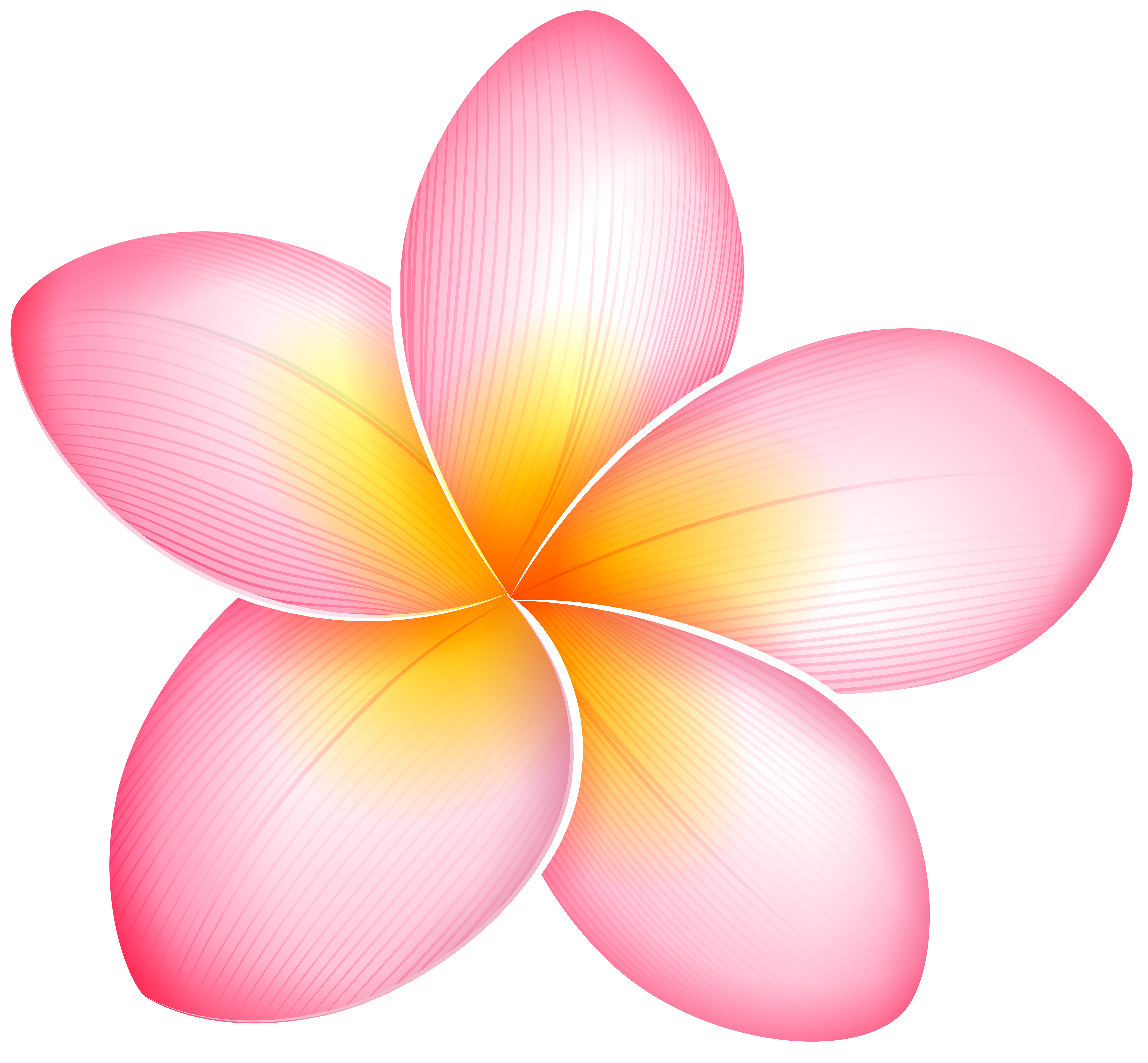 Flower faces clipart image free Pink Exotic Flower PNG Clip Art - Best WEB Clipart image free