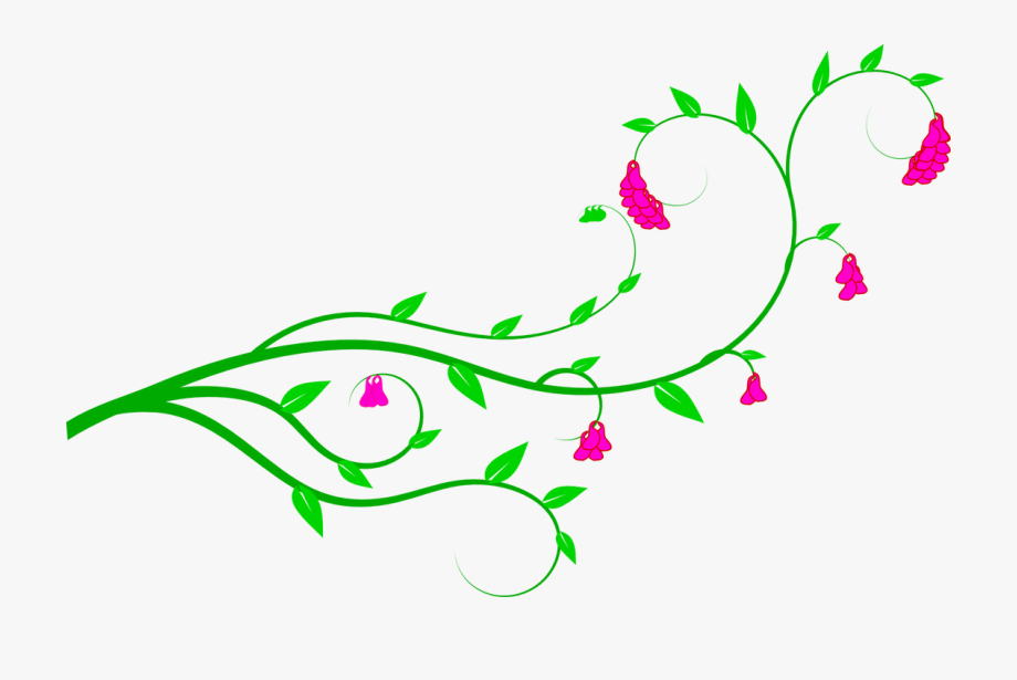 Clipart flower vines
