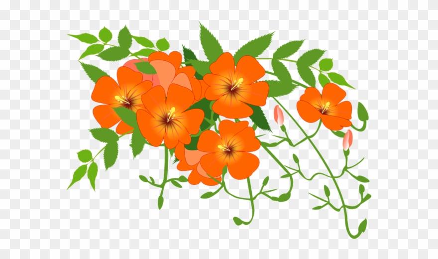 Clipart flower vines png Flower Vines Clip Art - Png Download (#2977464) - PinClipart png