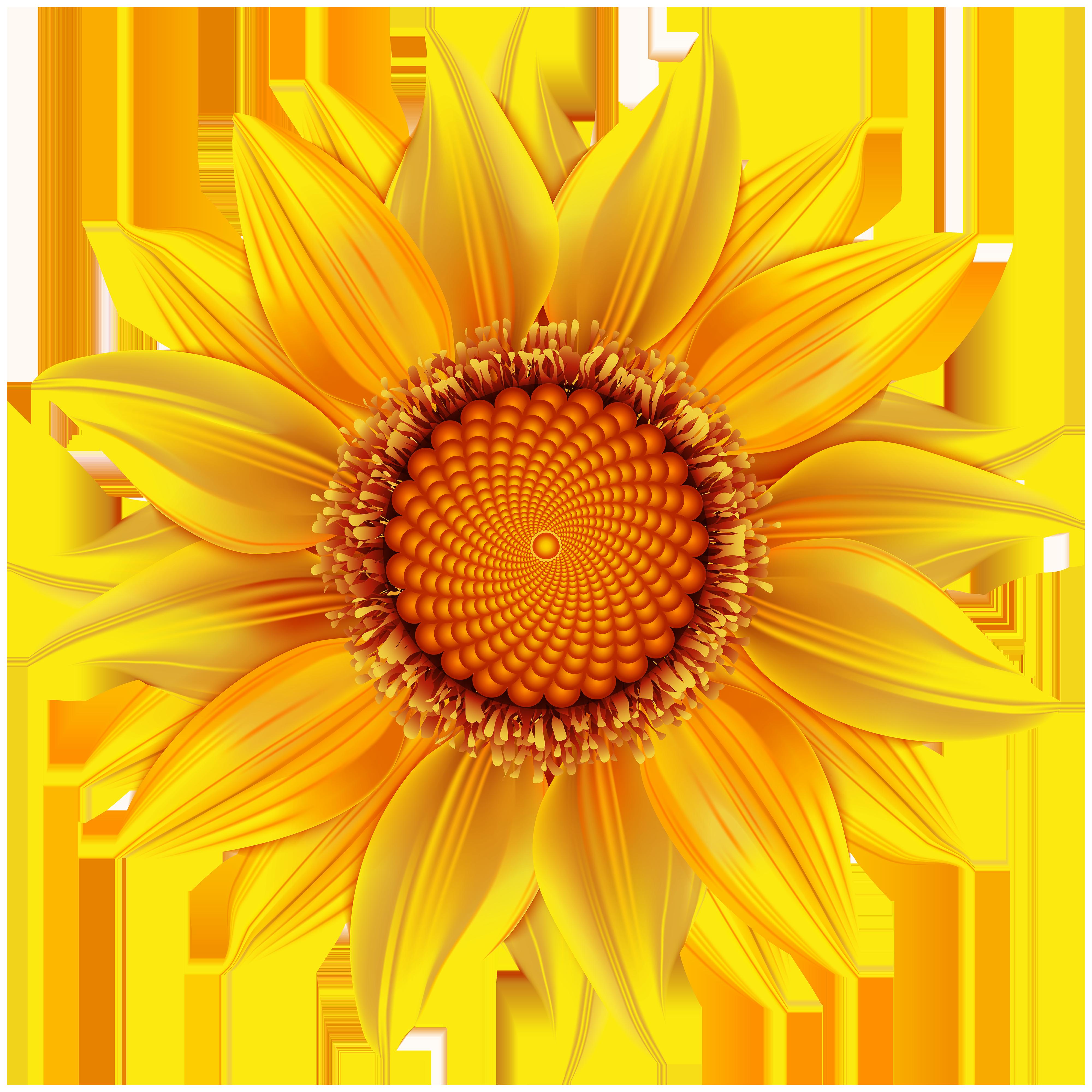 Flower clipart transparent image transparent stock Yellow Flower Transparent PNG Clip Art Image | Gallery Yopriceville ... image transparent stock