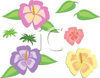 Clipart flowers and leaves download Collection of Hibiscus Flowers and Leaves - Royalty Free Clip Art ... download