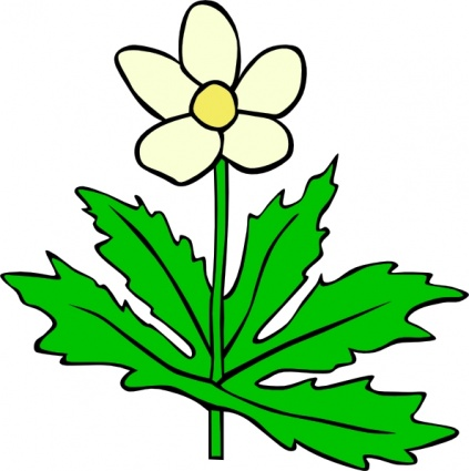 Clipart flowers and leaves clipart black and white Plant Leaves Clipart Plants Leaf Flower Flowers #N9wpln - Clipart Kid clipart black and white