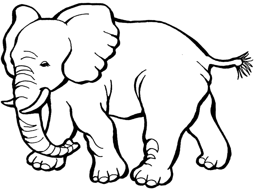 Clipart for elephant vector transparent library Image result for elephant clipart black and white | design project ... vector transparent library