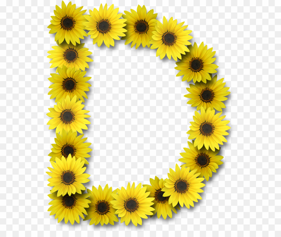 Clipart for images with letter o in flowers vector download Sunflower Alphabet Letters O PNG Alphabet Letter Clipart download ... vector download