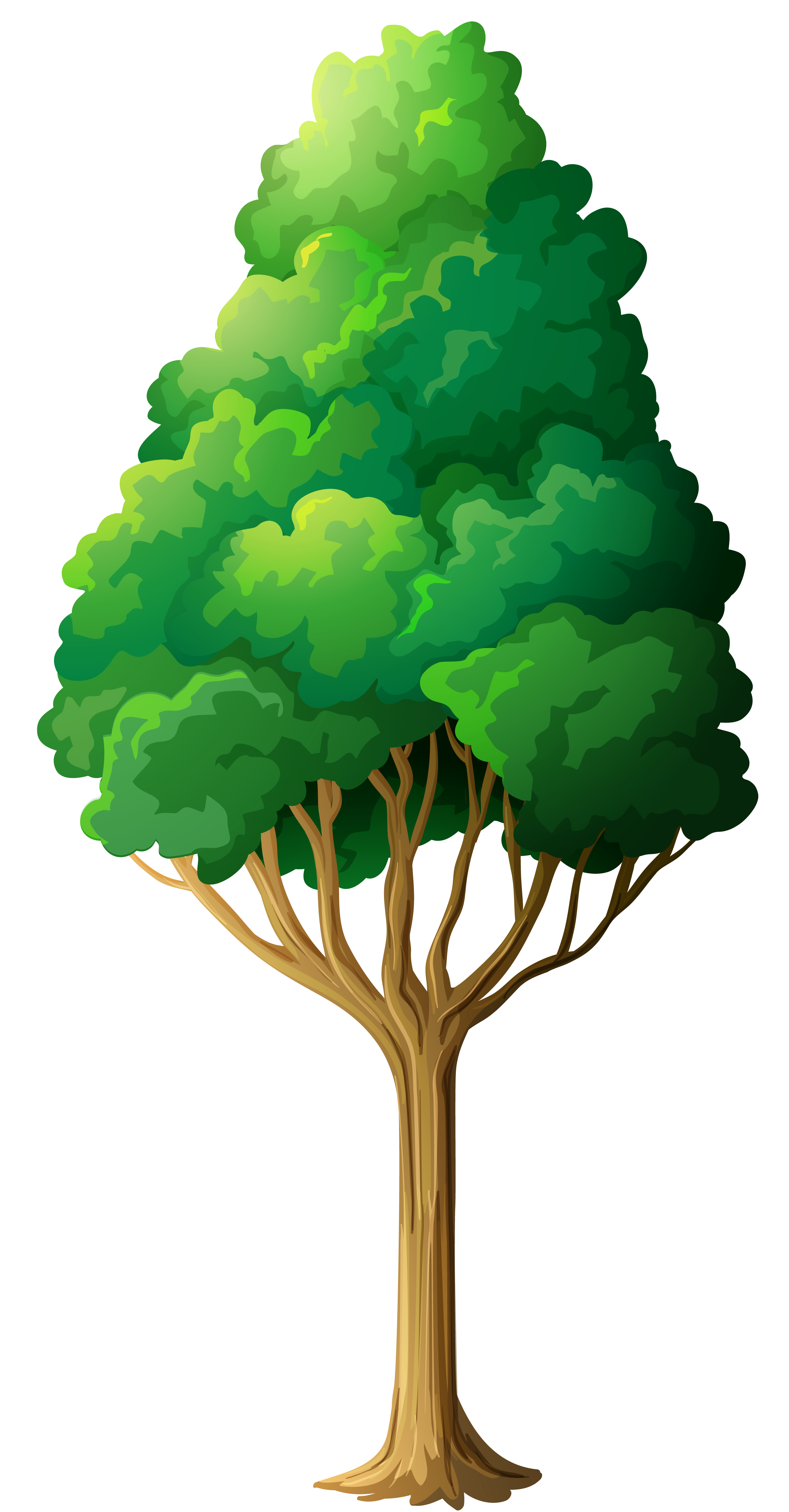 Green Tree PNG Clipart | Gallery Yopriceville - High-Quality Images ... clipart free