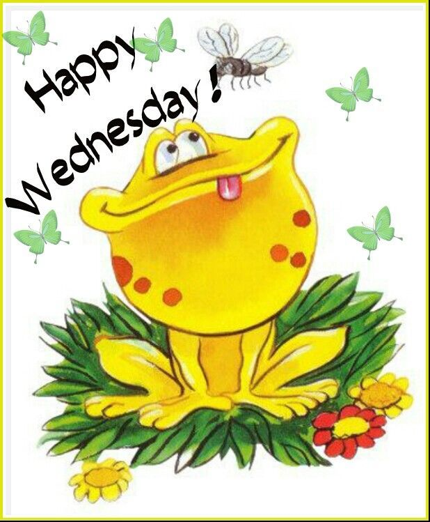 Clipart for wednesday clip art royalty free stock Happy Wednesday Frog | FROG CLIPART | Frog pictures, Frog ... clip art royalty free stock