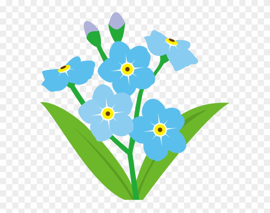 Clipart forget me not free library Forget Me Not Flower Clip Art - Forget Me Not Flower Clipart - Png ... free library