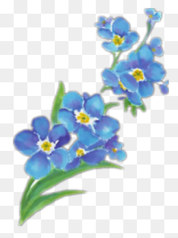 Clipart forget me not banner freeuse 9+ Forget Me Not Clipart | ClipartLook banner freeuse