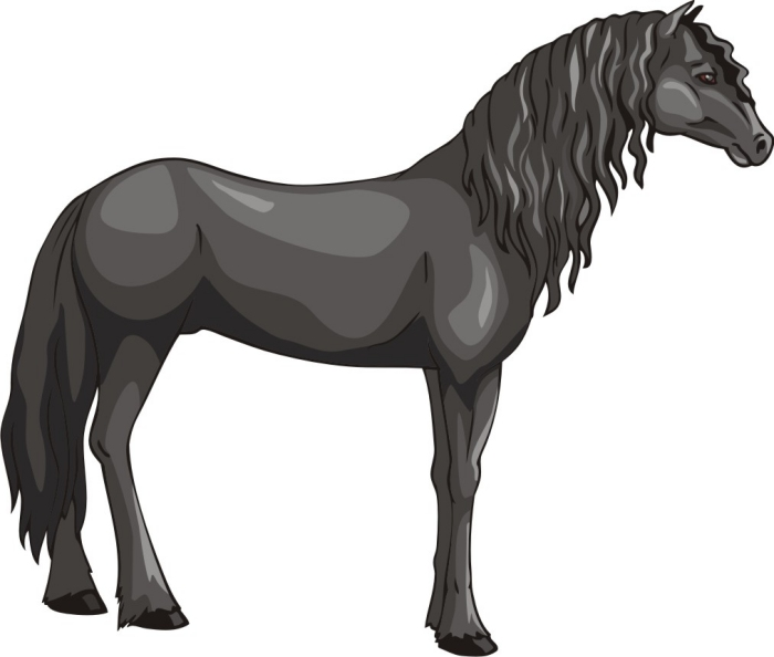 Clipart friesian clip art royalty free download Free Horse Vector Graphics #3 - The Friesian Horse - 594*700 - Free ... clip art royalty free download