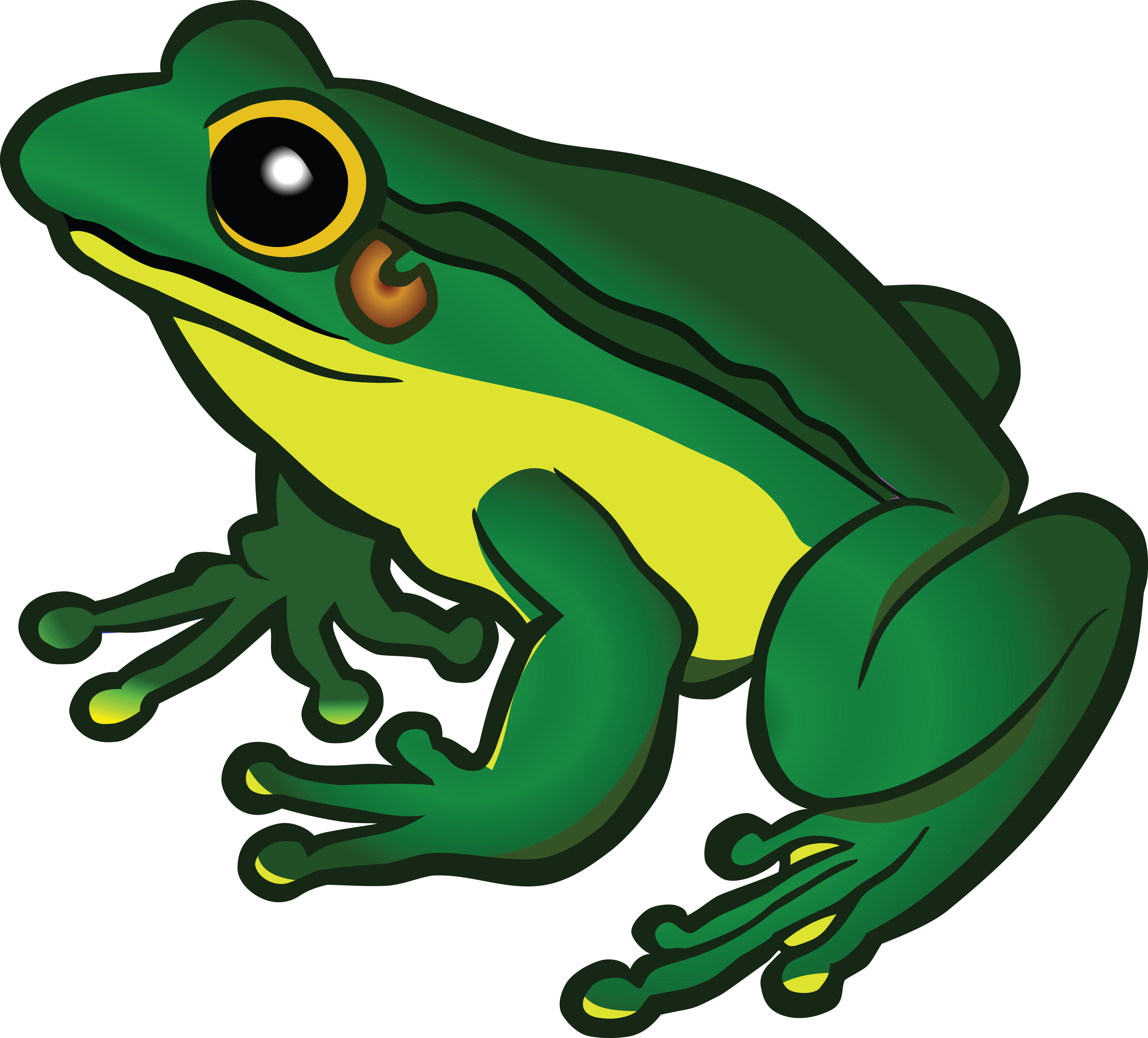Clipart frig png black and white Frog Images Free | Free download best Frog Images Free on ClipArtMag.com png black and white