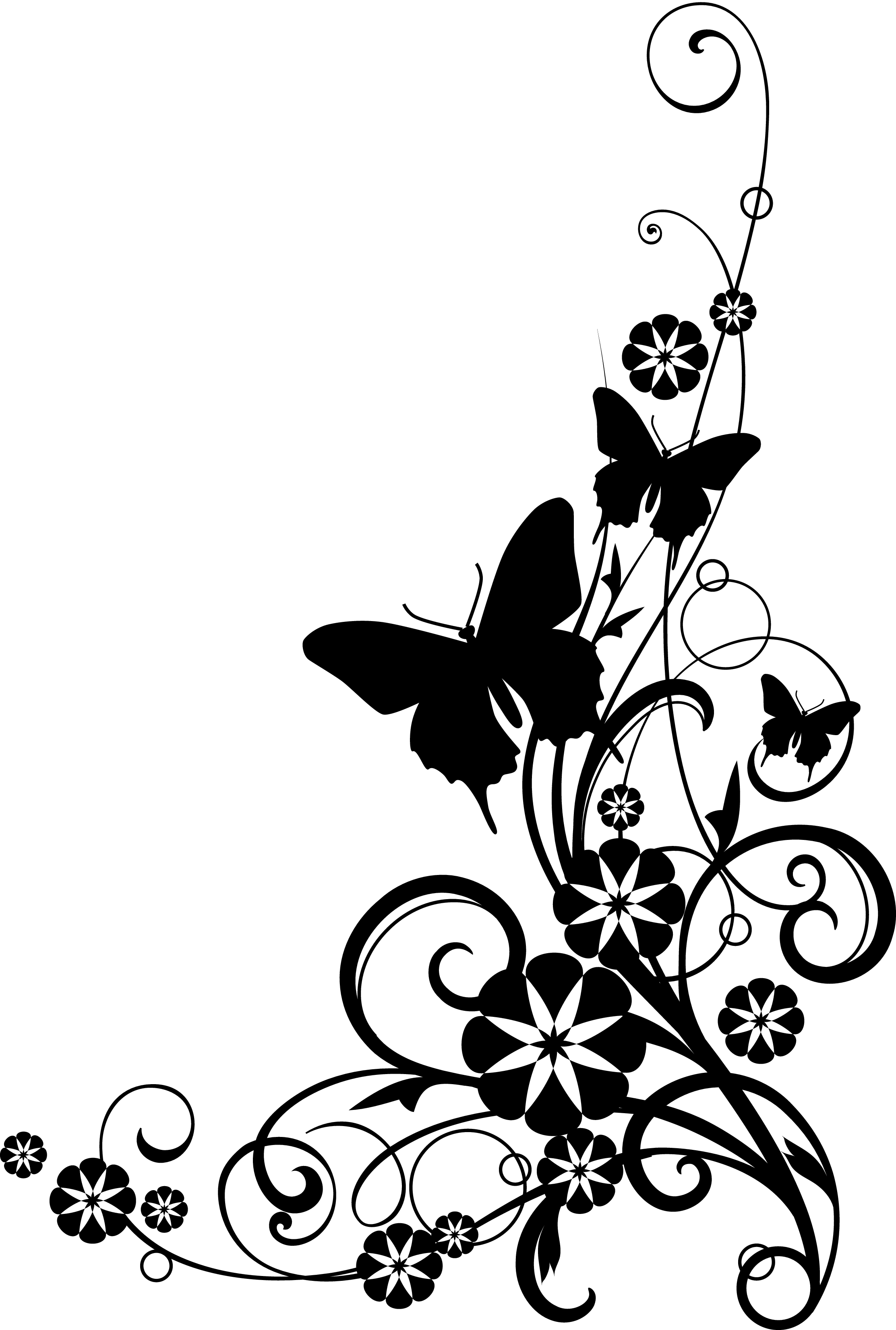 White flower clipart transparent image black and white download Clipart garden site - ClipartFest image black and white download