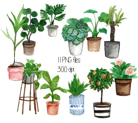 Clipart gardening is my favorite therapy png file svg freeuse stock Indoor plant pot cliparts, watercolor clipart, plant clipart, potted ... svg freeuse stock