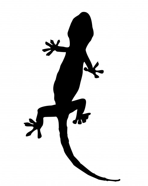 Clipart gecko vector black and white Gecko Silhouette Clipart Free Stock Photo - Public Domain Pictures vector black and white