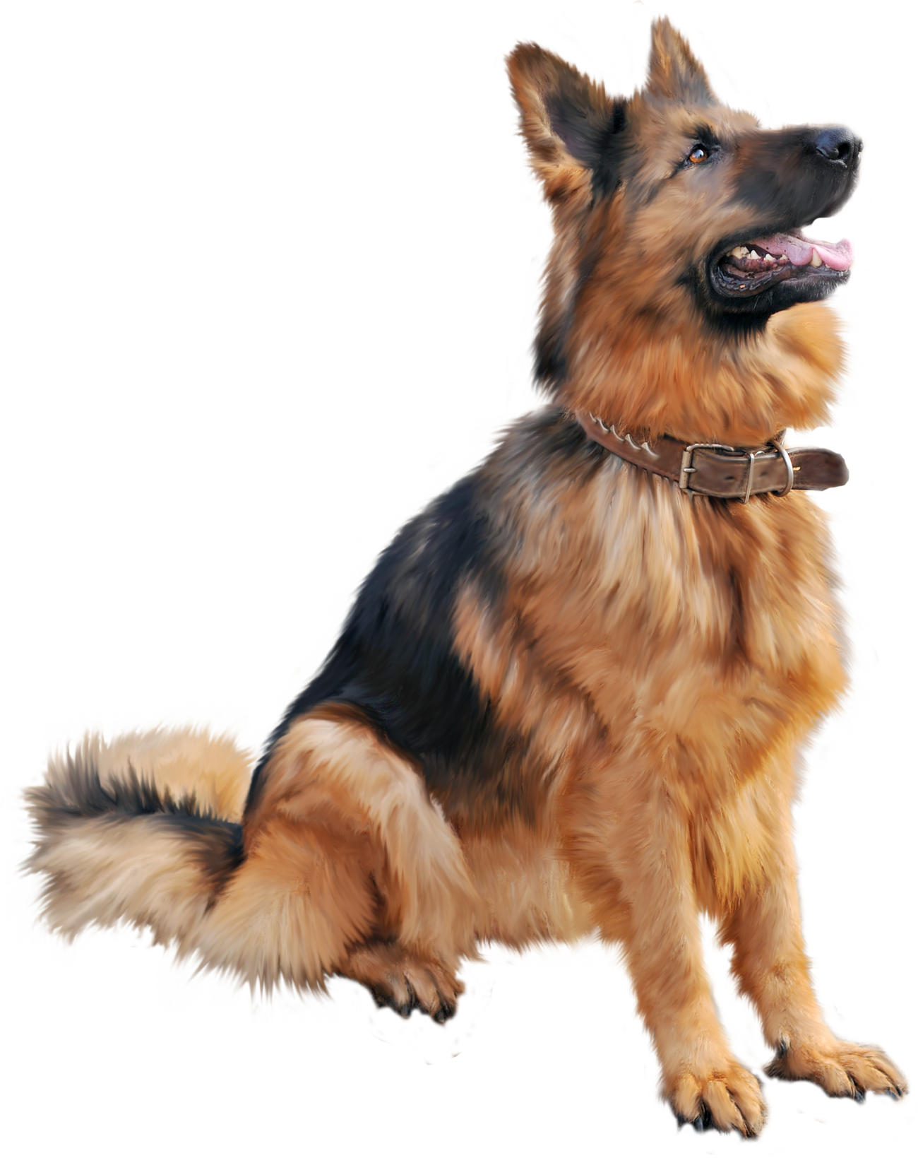 German shepherd dog clipart clip German shepherd dog sitting PNG Image - PurePNG | Free transparent ... clip
