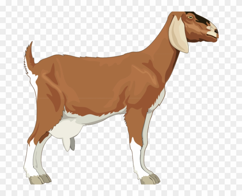 Clipart goats free transparent library Goat Pictures Free Goat Free Vector 4vector Simple - Goat Clipart ... transparent library