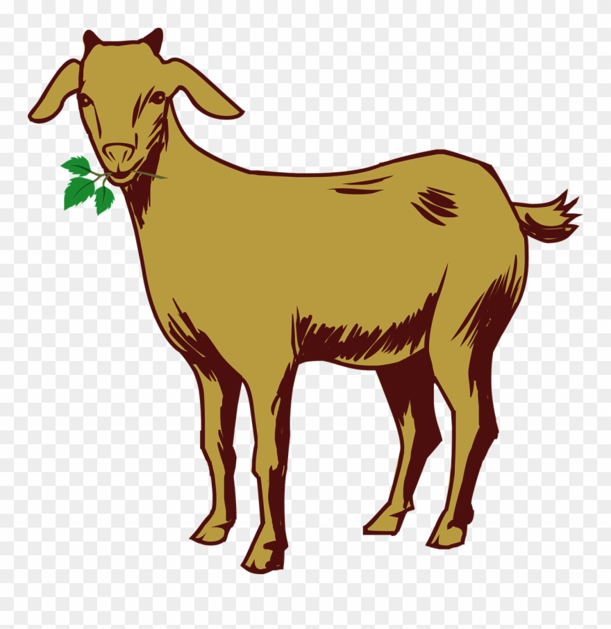 Clipart goats free clipart transparent download Free Goat Clipart 6, Buy Clip Art - Goat Drawing With Color - Png ... clipart transparent download