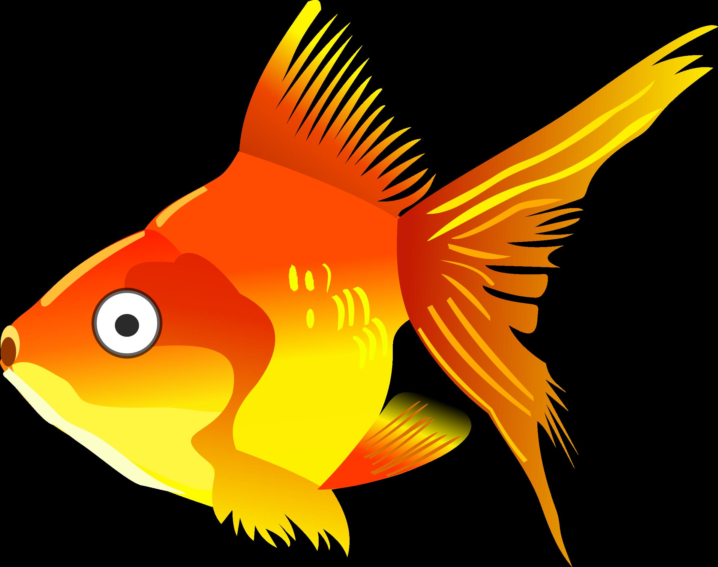 Goldfish fish clipart graphic transparent library Clipart - Cartoon goldfish graphic transparent library