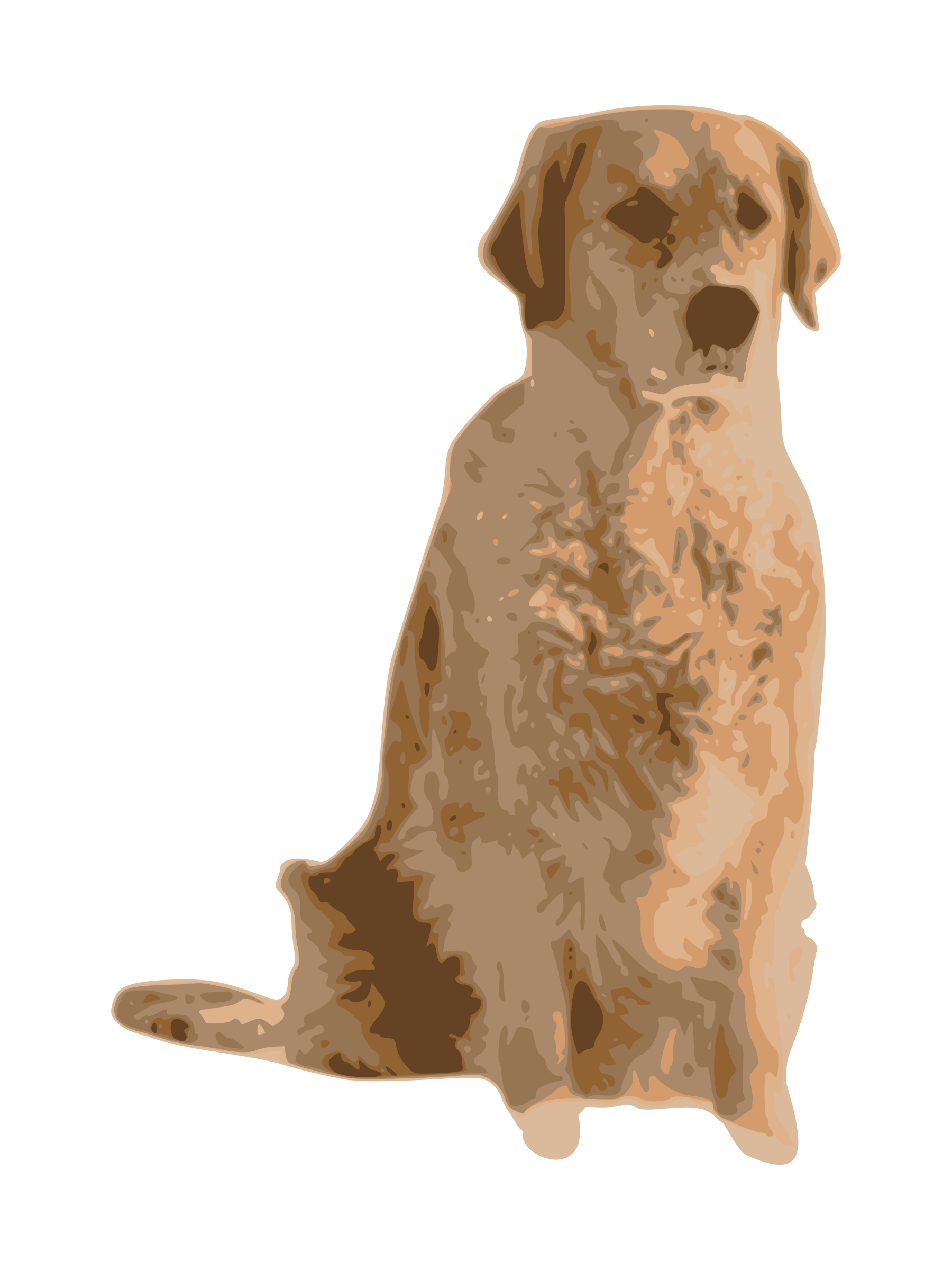 Golden retriever dog clipart picture freeuse stock Clipart - golden retriever picture freeuse stock