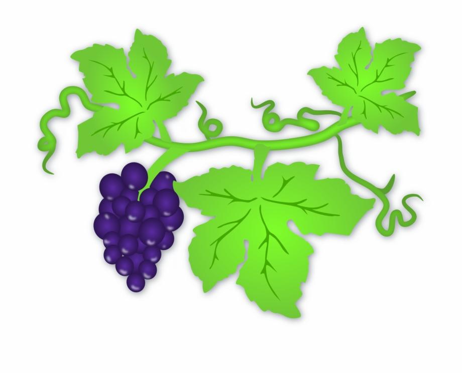 Clipart grape leaves graphic Grape Leaf - Clip Art Grape Leaves, Transparent Png Download For ... graphic