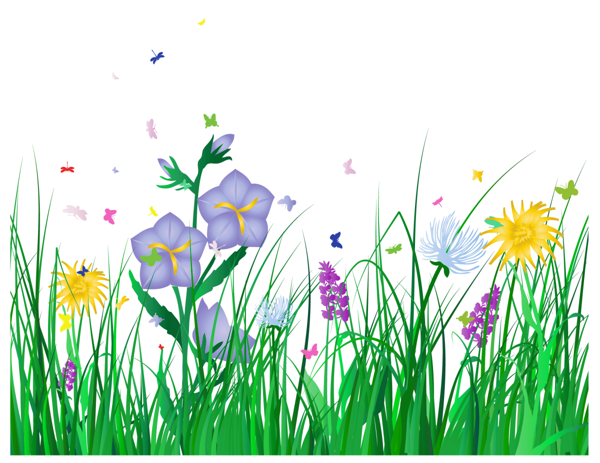 Flower meadow clipart. Transparent grass and flowers