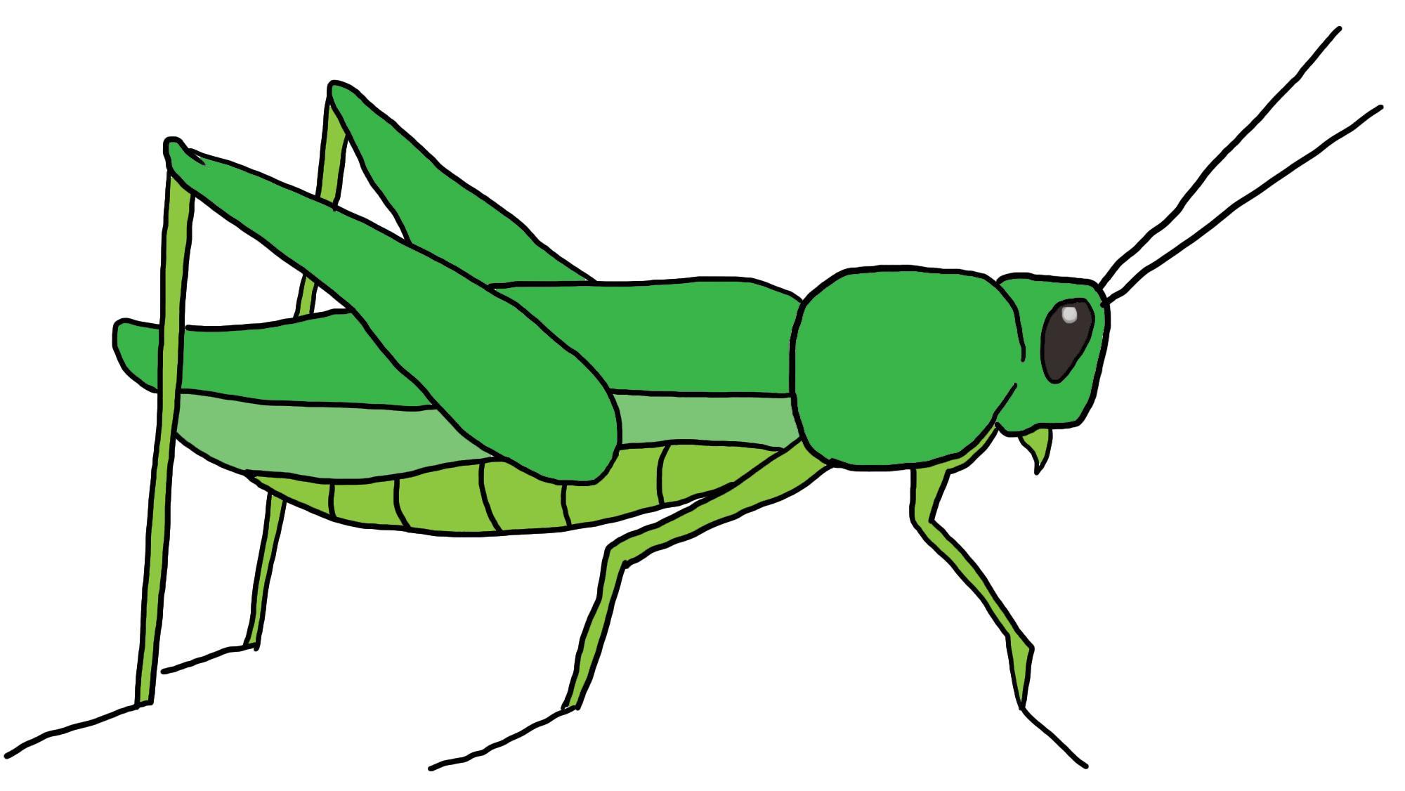 Clipart grasshopper svg freeuse stock Unique grasshopper clipart design – Gclipart.com svg freeuse stock