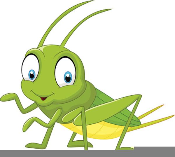 Clipart grasshopper picture transparent library Free Clipart Grasshopper | Free Images at Clker.com - vector clip ... picture transparent library