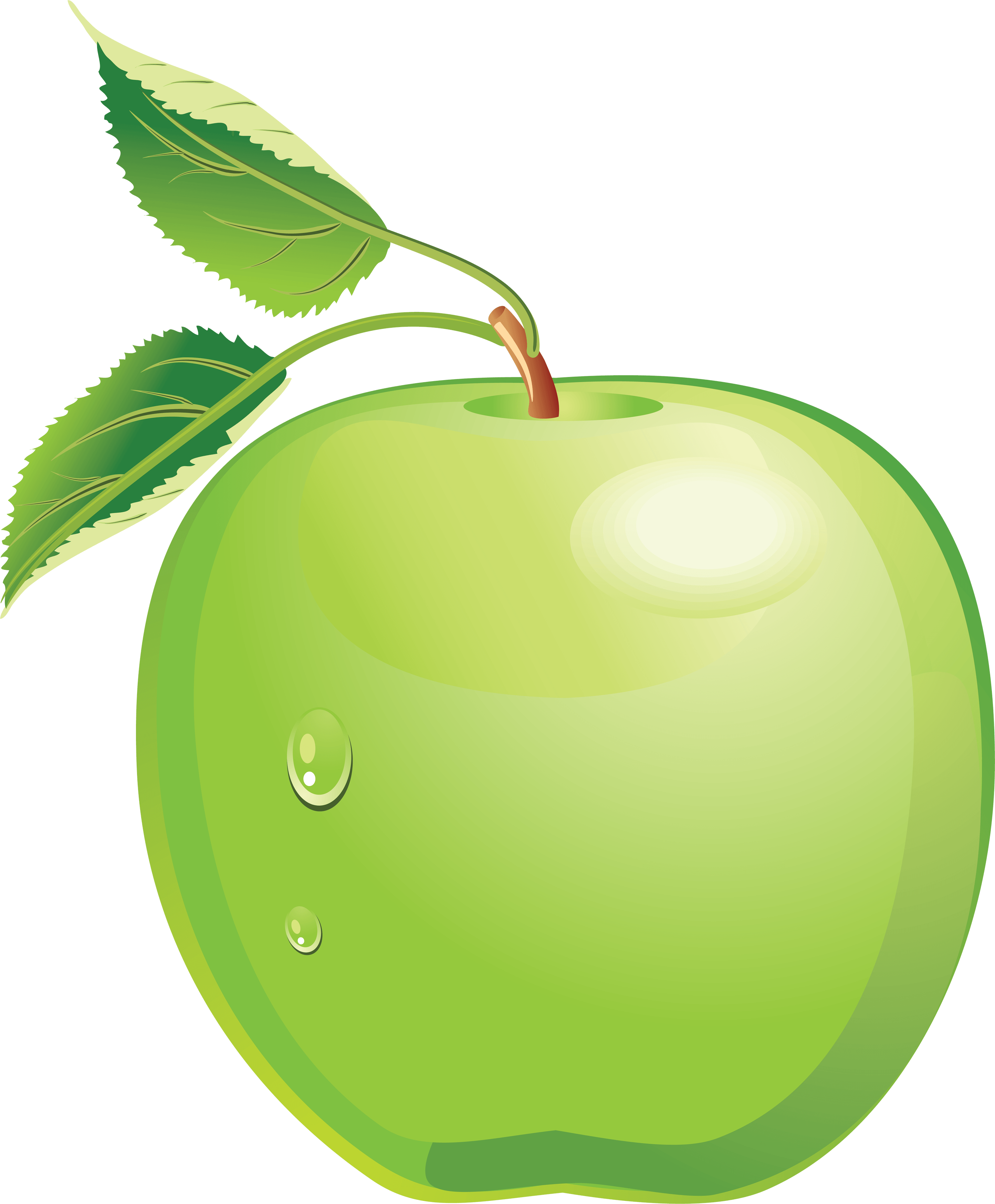 Clipart green apple banner free 10 Green Apple Png Image banner free