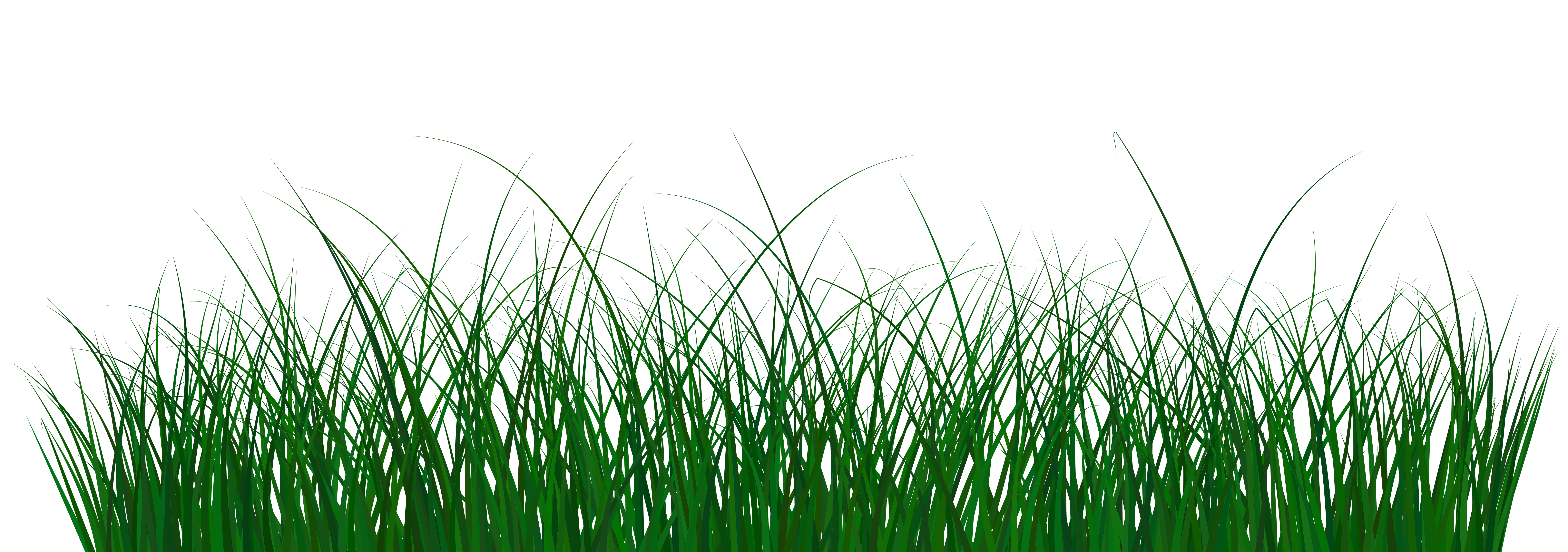 Clipart green grass banner royalty free stock Green Grass PNG Clip Art Image | Gallery Yopriceville - High ... banner royalty free stock